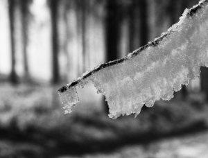 Eisskulptur